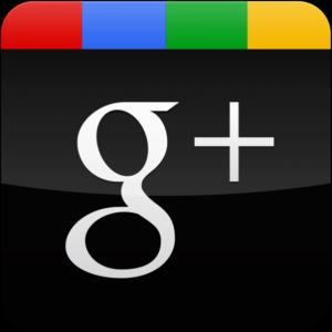 Die Max Weber Stiftung bei Google+